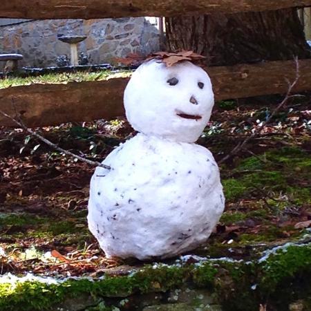 Snowman, snow fun, in Waynesville