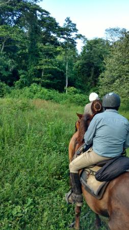San Antonio, Belize: Be honest in your riding ability. Horses are selected to give you the most enjoyable ride
