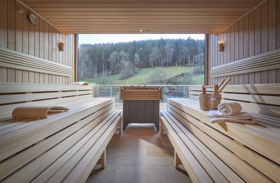 Bad Teinach-Zavelstein, Германия: Ladies Spa Panoramasauna at Hotel Therme