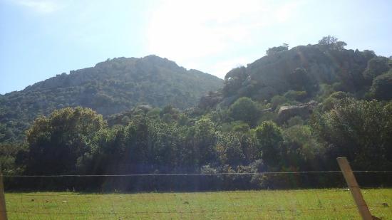 La Caletta, อิตาลี: OROSEI