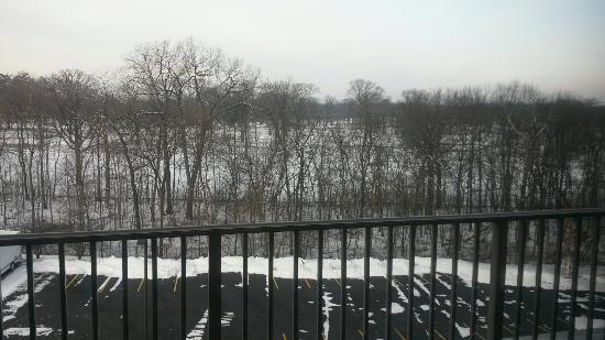 Eaglewood Resort & Spa: Resort grounds in January