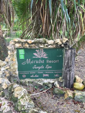 Maruba Resort Jungle Spa: photo0.jpg