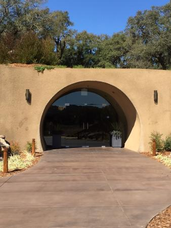 Healdsburg, CA: Lunch, wine tasting and tours