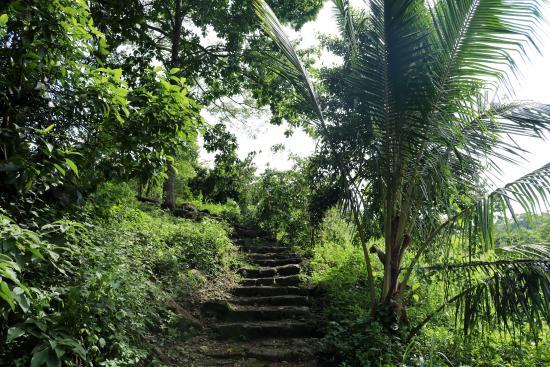 Diyaluma Falls Inn: Path towards the bottom of the falls. This is found behind the hotel.