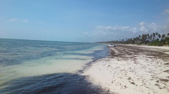 Villa Kiva Resort and Restaurant: Beach
