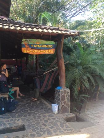 Tamarindo Backpackers Photo