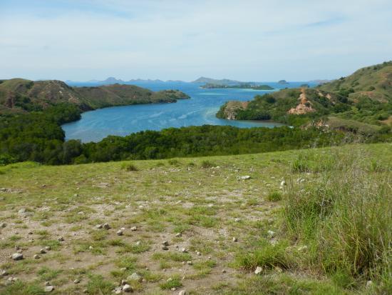 Loh Liang National Park: Short Trek View