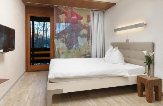 Seeblick Hohenhotel: Einzelzimmer mit Bergsicht