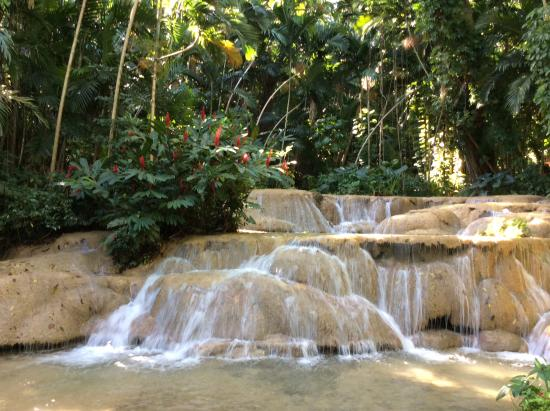 falls of the natural spring picture of the enchanted
