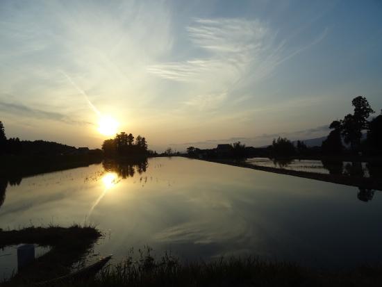 Sado, Japan: Rice paddy fields