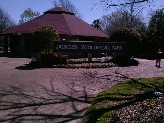 Foto Jackson Zoo