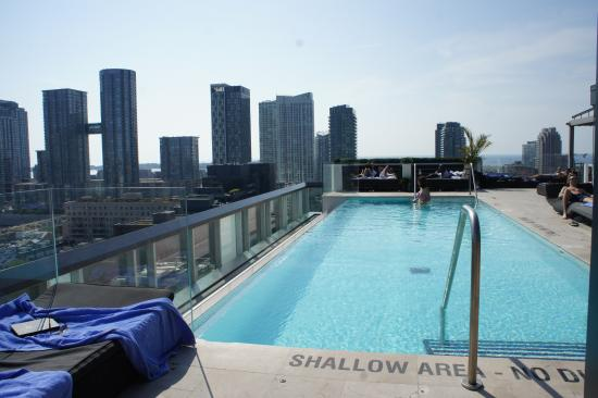 Thompson Toronto - A Thompson Hotel: Rooftop Infinity Pool