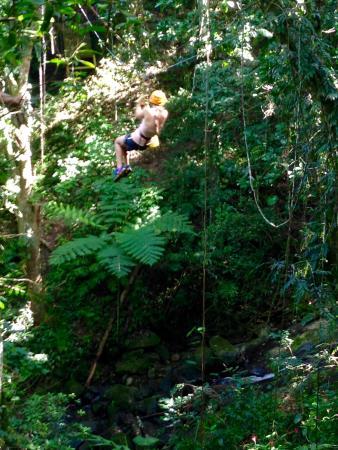 Acampa Nature Adventure Tours: zip lining in the rainforest!