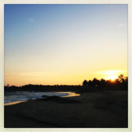 Nikara Yala Beach Villas Photo
