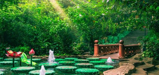 Suoi Tien Theme Park: Peaceful lotus pond