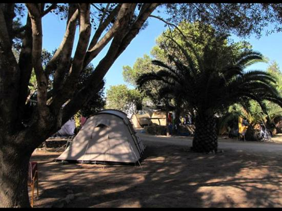 Camping Maddalena: POSTO TENDA