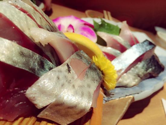 Tosa Shimizu World: 清水サバのお刺身♪