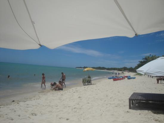 Resort La Torre: Praia do hotel