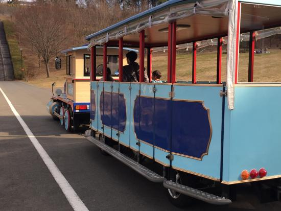 Odawara Wanpaku Land: 移動用車