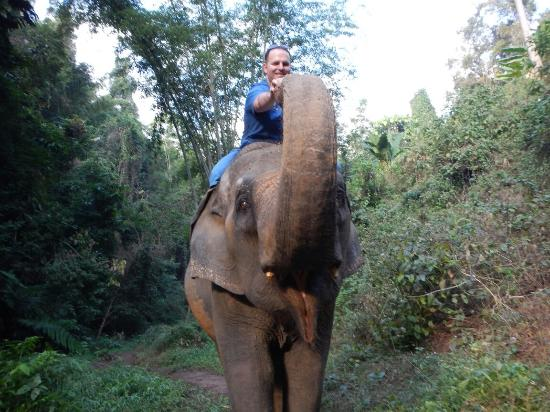 Blue Elephant Thailand Tours - Private Day Tours
