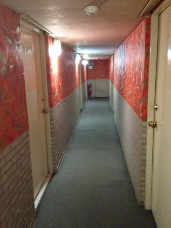 Qiaoli Hotel: 廊下。天井は低い。火災感知器はついている。