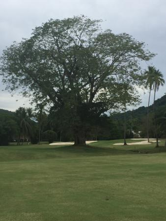 Campo de Golf Ixtapa: The great obstacle on hole 10 par 5 causing a lay-up shot