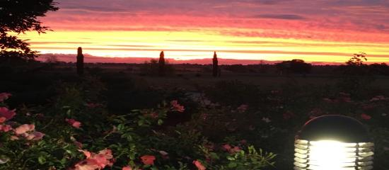 Pittsworth Motor Inn: View the beautiful Sunsets