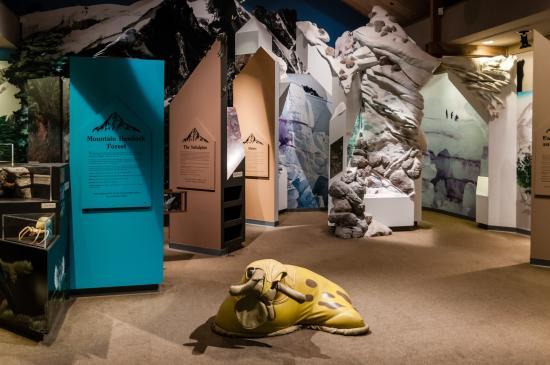 North Cascade Visitors Center: Exhibits
