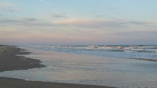 Padre Island National Seashore: 20160117_174631_large.jpg