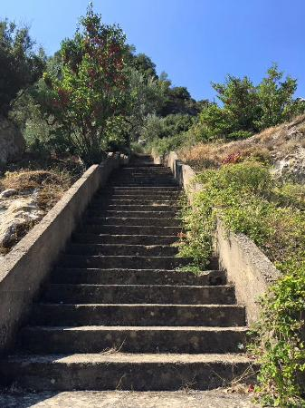 Tripi, Hy Lạp: Steps