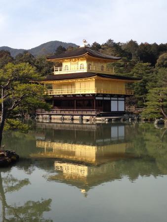 Kinkakuji Temple: 綺麗に撮れました