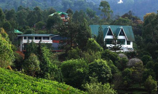 camelot resort munnar kerala resort reviews photos rate rh tripadvisor in