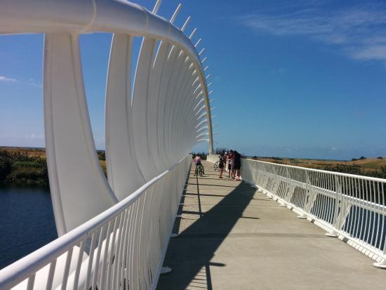 Taranaki Region, Nowa Zelandia: Te Rewa Rewa bridge