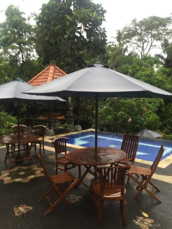 beautiful settings picture of alas petulu cottages ubud tripadvisor rh tripadvisor com