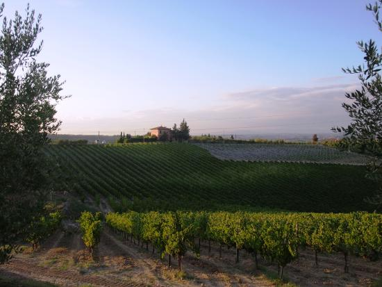 Great Views of San Gimignano, Cool Pool and set in a Vineyard what more could you want