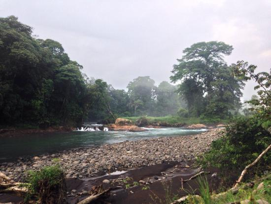 Sarapiqui, Costa Rica: Hotel grounds