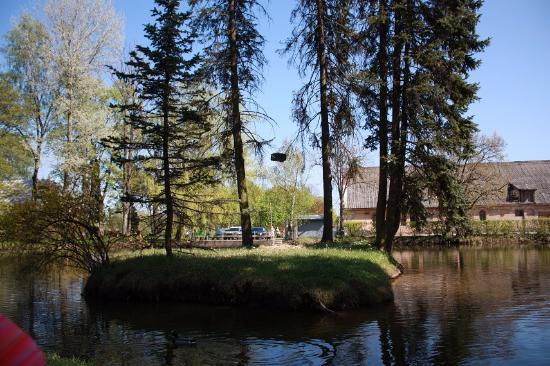 Kaunas Botanical Garden: В саду том пруд. На пруду - остров. На острове- ели. На елях висит на цепях ларец. Смерть Кощея?