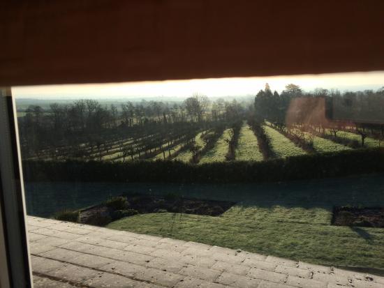 Shakespeare's View: Beautiful views