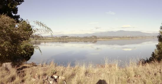 Tasman Foto