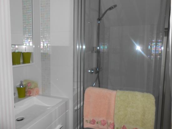 Sainte Genevieve Les Gasny, Prancis: salle d'eau chambre ROSE