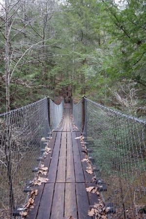 Jamestown, TN: Trails