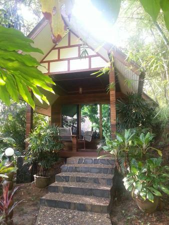 Khao Sok Las Orquideas Resort: 20160118_082625_large.jpg
