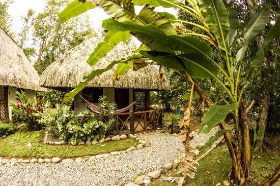 Las Lajas, ปานามา: jardin
