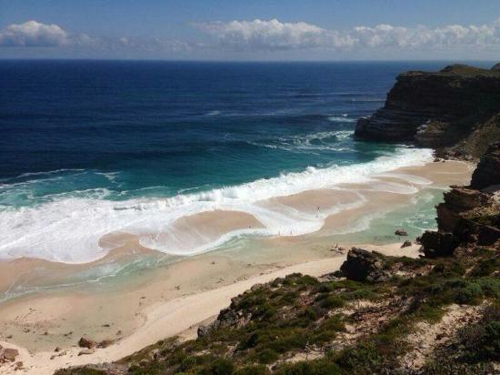 Cape Town Merkez, Güney Afrika: Cape Point Nature Reserve
