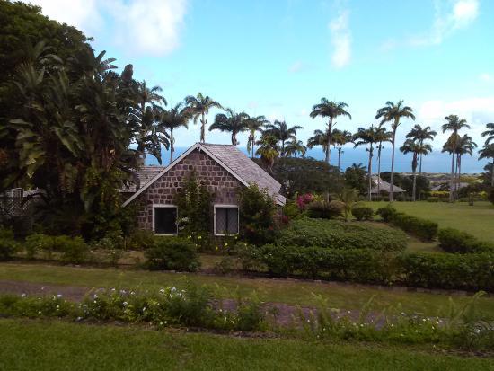 Ottley's Plantation Inn Picture
