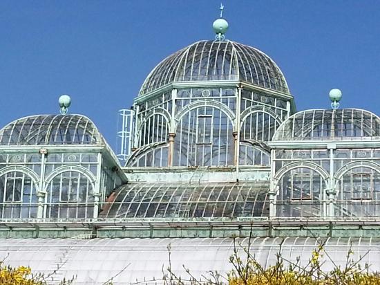 Serres Royales De Laeken : 20130424_112003_large.jpg