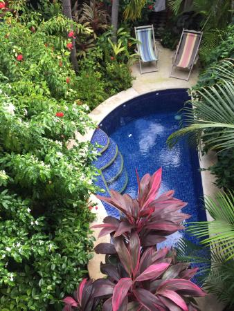 Casa Cubana: pool and view from the room