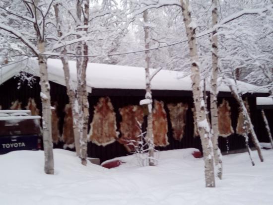 Svanvik ภาพถ่าย