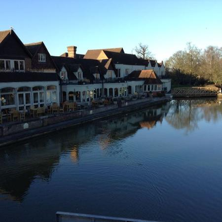 Streatley on Thames, UK: View of swan from the bridge