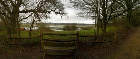 Pulborough, UK: Viewing point